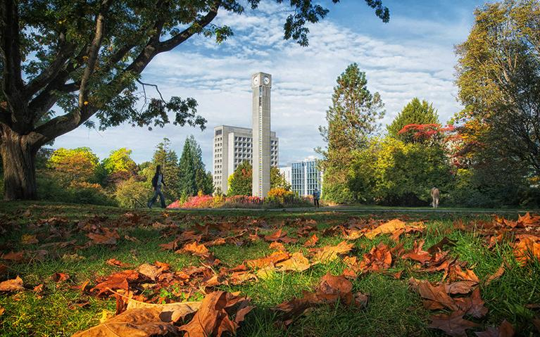 UBC Clocktower and fall leaves. Photo credit: Don Erhardt.